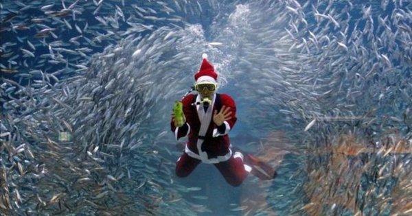 Top 10 de Esquisitices: Então é Natal? - Fotos - R7 Hora 7