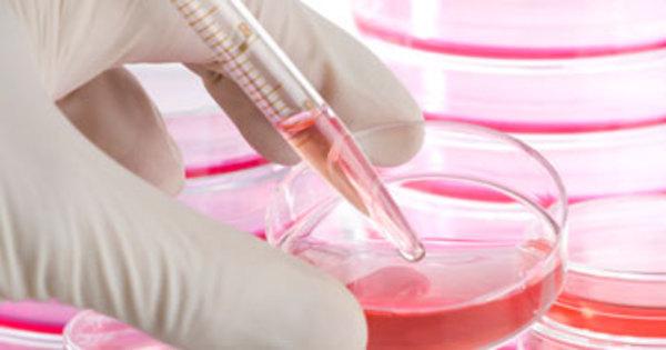 """""""Estamos mais próximos da vacina contra a Aids"""", diz pesquisador ..."""