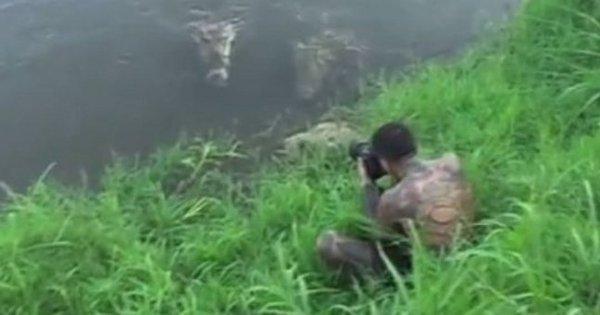 Fotografo é atacado por crocodilo e escapa por pouco - Notícias ...