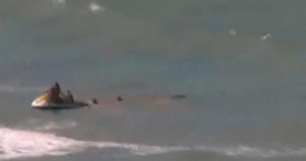 Morre turista paulista atacada por tubarão em praia de Recife ...