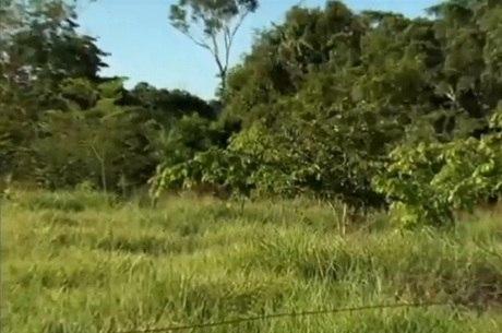 Naturezamais pequenos agricultores aprendem a for Recuperar agua piscina verde