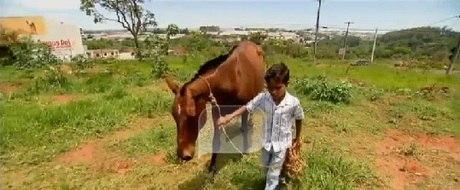 A briga de família que pode separar um garoto de seu cavalo.