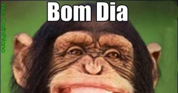 São Paulo vira piada na web após eliminação para a Ponte Preta ...