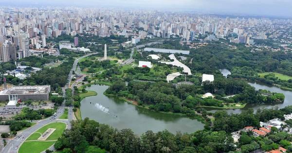 Natal de SP terá árvore de 54 m no Ibirapuera - Notícias - R7 São ...