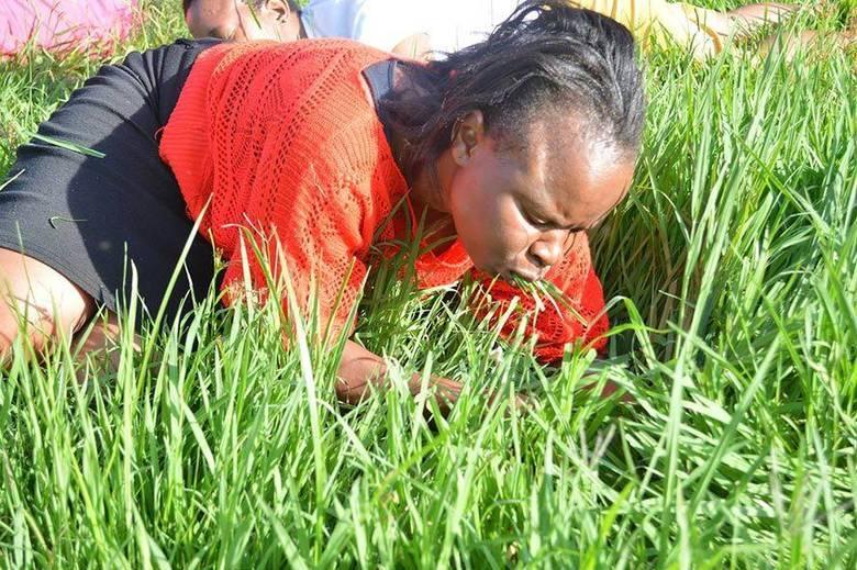 """""""Sim, nós comemos grama e somos orgulhosos disso, porque isso demonstra que, com o poder de Deus, podemos fazer qualquer coisa"""", diz Rosemary Phetha ao jornal local Times Live.  De acordo com a jovem, estudante de direito de 21 anos, ela estava lutando contra um dor de garganta havia um ano, mas os sintomas passaram após ela comer grama"""