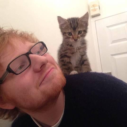O fofinho Ed Sheeran prepara o lançamento de um novo CD para o dia 23 de junho. Chamado X, o álbum já conta com seu primeiro single, a poderosa e envolvente Sing. Ele também já divulga a música inédita Don't, que muita gente afirma se tratar de um desabafo sobre uma possível traição de Ellie Goulding, sua ex-namorada, com Harry Styles, da banda One Direction. Eita! Promete esse CD, hein?