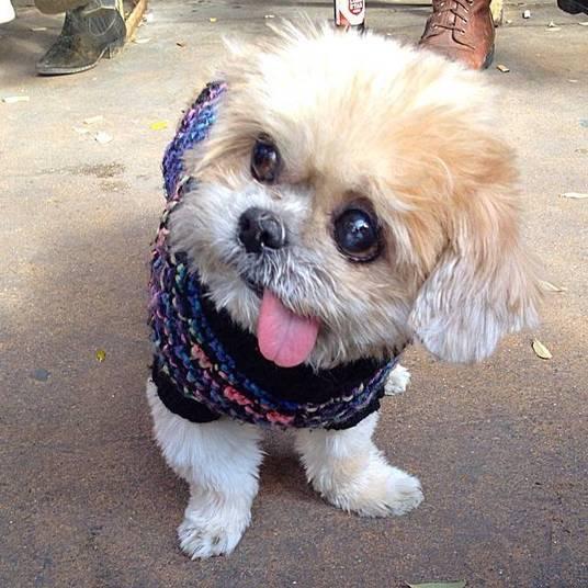 Marnie tem quase três mil seguidores nas redes sociais e suas fotos são curtidas por muita gente