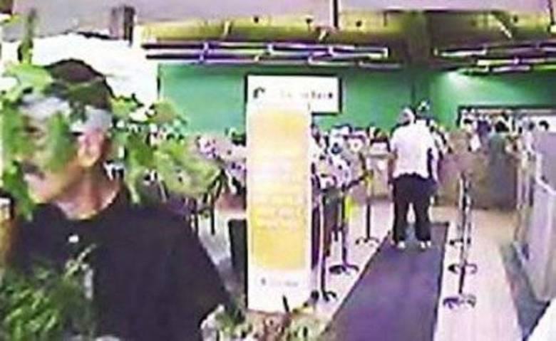 Na cidade americana de Manchester,   um sujeito foi filmado roubando um banco usando uma fantasia tosca de   árvore. Ele foi filmado pelo circuito interno e, quando foi preso, a   polícia não quis quebrar o galho dele