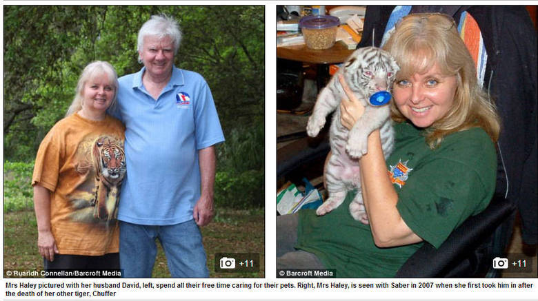 Dois anos depois de deixar o seu emprego, ela chegou em casa com Chuffer, um dos filhotes que habitou sua casa