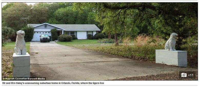 Na foto acima, é possível ver a casa da