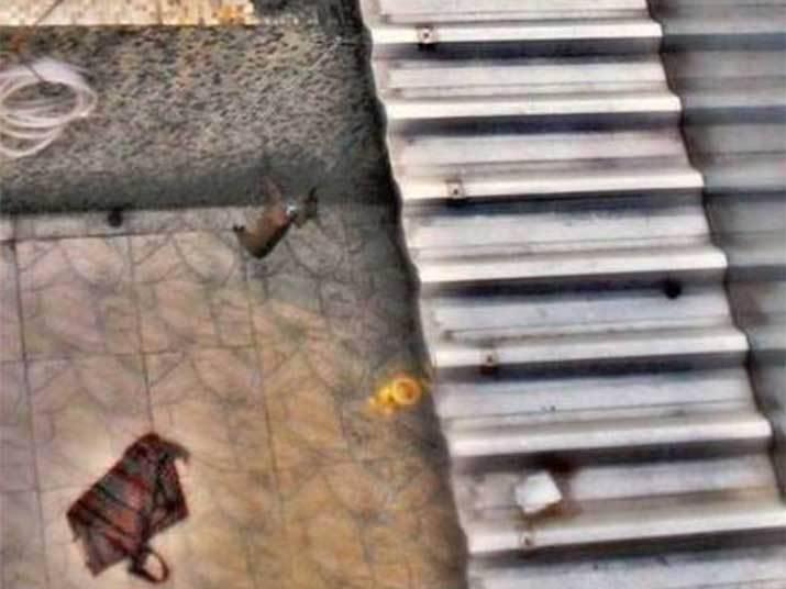 A cadela que era pendurada pela coleira em um varal e agredida, na Vila da Penha, zona norte do Rio, foi resgatada por uma equipe de veterinários da Sepda (Secretaria de Promoção e Defesa dos Animais), da Prefeitura do Rio.