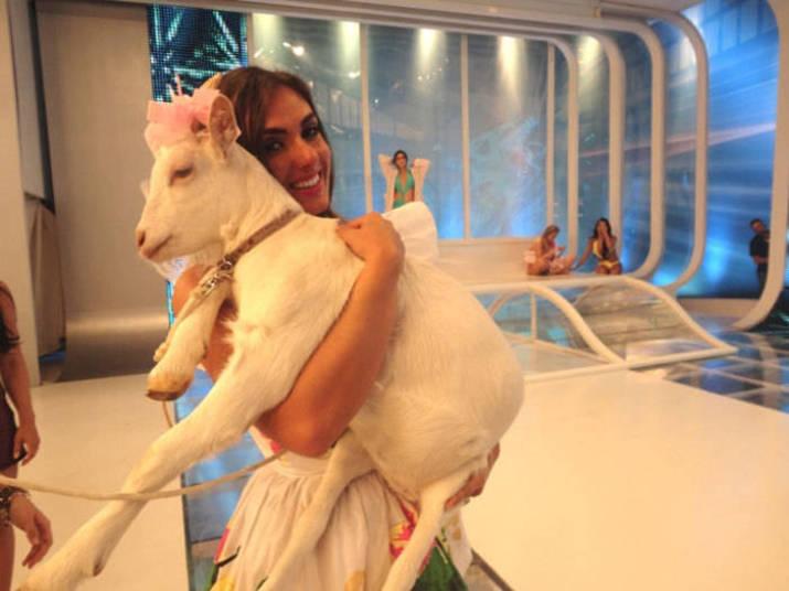 Nicole Bahls se apaixonou pelas cabras durante sua participação em A Fazenda. Ao fim do reality, a bela foi presenteada com um animalzinho+ Opine: Você teria um animal exótico em casa?