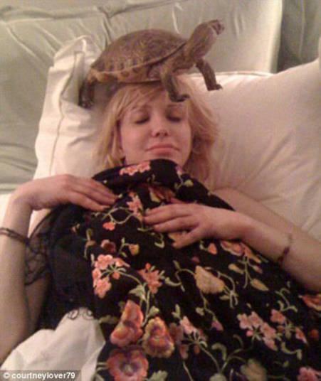 Tartaruga não é exatamente um animal exótico, mas quem dorme com uma na cama? Só mesmo a eterna viúva de Kurt Cobain, Courtney Love!+ Opine: Você teria um animal exótico em casa?