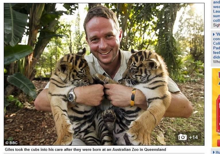 O tratador Giles Clark levou o animal para casa após Spot e Stripe terem nascido em um zoológico australiano