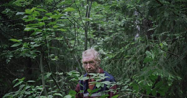 Tem gente que vive escondida e sozinha na floresta, como bicho do ...