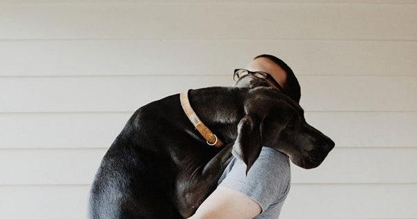 Que mimo gostoso! Cachorros carinhosos dão abraços bem ...