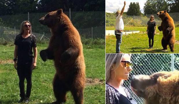 """Juju Salimeni treme ao tentar ganhar beijo de urso: """"Pode engolir minha cabeça"""""""
