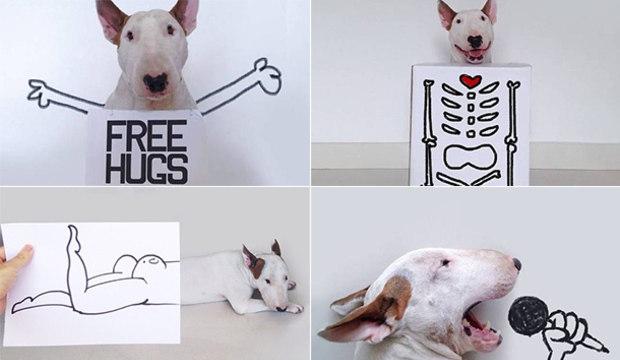 Que viagem! Com seu cão, dono cria engraçadas e criativas ilustrações