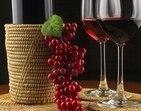 R7 te leva para uma visita a uma vinícola do Porto
