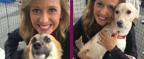 Luisa Mell conta sobre sua relação com animais