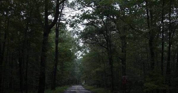 É melhor evitar esses lugares! Estradas assombradas são ...