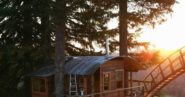 Homem gasta R$ 337 mil pra construir casa na árvore com hidro e ...