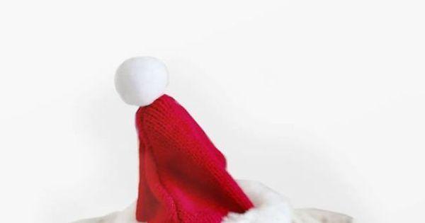 Tá chegando! Cachorra veste roupinhas natalinas e faz sucesso no ...