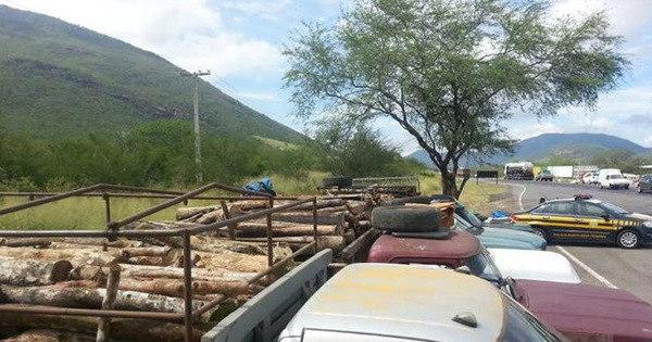 Homens são flagrados transportando madeira irregular e dizem que ... - R7