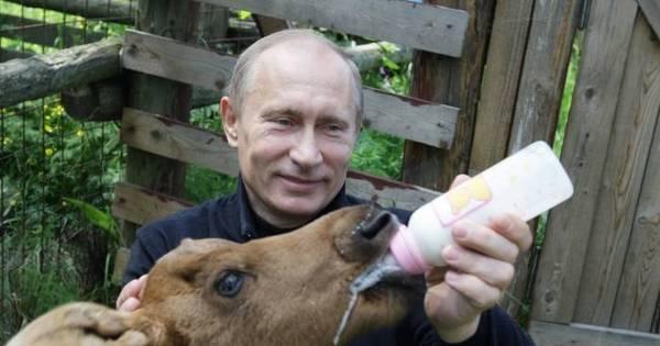 Rússia critica estudo dos EUA sobre suposto autismo de Putin ...