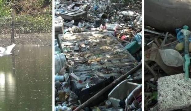 """Baía de Guanabara tem rios mortos e """"cenário de latrina"""" nos 450 anos do Rio de Janeiro"""