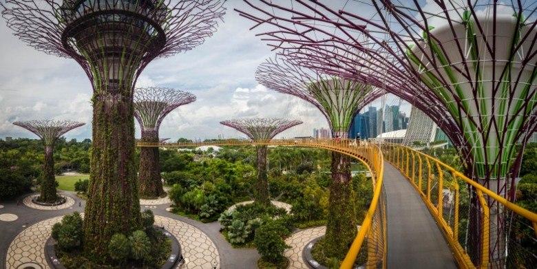 Resultado de imagem para Jardim Botânico de Cingapura