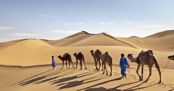 Nevou no Saara! O que aconteceu no meio do deserto parece ...