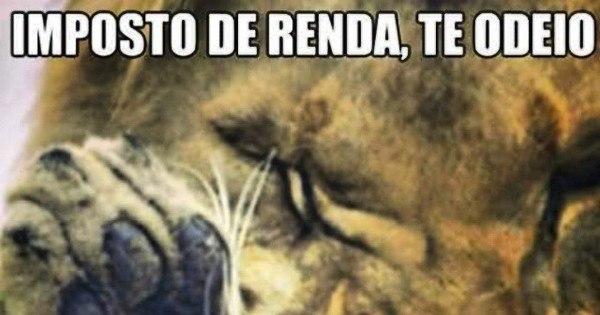 O Leão vai te pegar! Prazo do Imposto de Renda entra na reta final ...