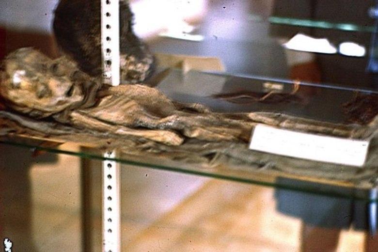 Segundo o pesquisador, não há dúvidas. A imagem mostra uma criatura de cerca de 1,20 metros, claramente não-humana, de cabeça desproporcionalmente grande e corpo frágil(Foto recente)
