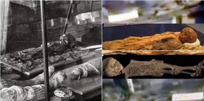Veja na imagem acima. A discussão rendeu inúmeras comparações com múmias egípcias,o que causou polêmica nas redes sociais