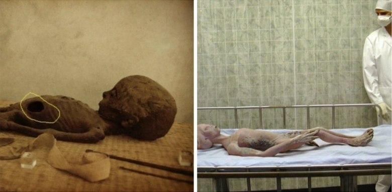 Segundo os críticos das afirmações de Carey, é muito difícil afirmar que as imagens são de fato o corpo de um alienígena