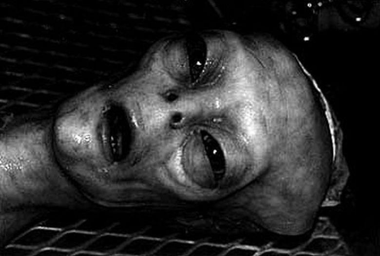 O ufólogo americano Tom Carey causou polêmica ao revelar ao mundo uma fotos que comprovariam a existência de seres extraterrestres. Meses atrás, essa imagem foi divulgada e, agora, em convenção realizada no dia5 de maio de 2015 que reuniu uma série de ufologistas, eis que surge uma imagem ainda mais intrigante