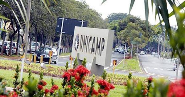 Mais da metade dos aprovados na Unicamp são de escola pública ...