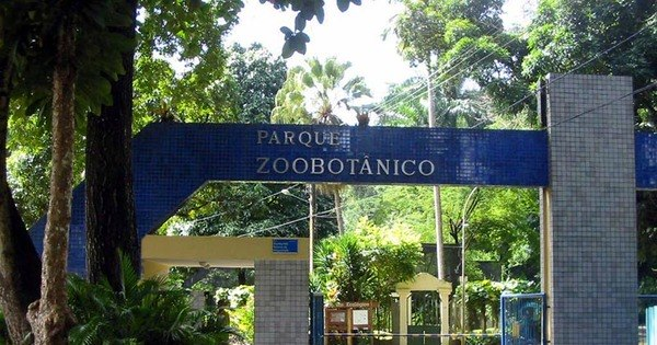 Lazer ao ar livre: zoológico é opção para o feriado prolongado em ...