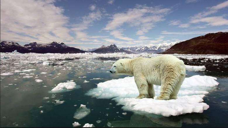 O aquecimento global já é um tema discutido abertamente no mundo todo hoje, mas ainda há muito a ser feito para que a humanidade não sofra no futuro