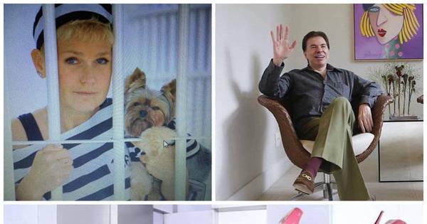 Luto de Jennifer Pamplona, boatos de doença de Silvio Santos e ...