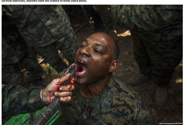 Os rigores físicos e psicológicos do combate são intensos, e as forças armadas têm o desafio de preparar os seus soldados para o pior que eles podem ter de enfrentar no campo de batalha. Por isso, diversas divisões exigem que os soldados passem por treinamentos extenuantes. As informações são do Business Insider