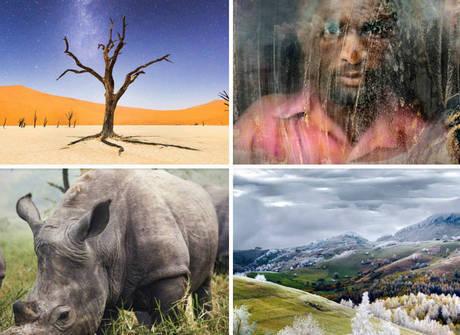Conheça as fotos vencedoras de concurso da National Geographic