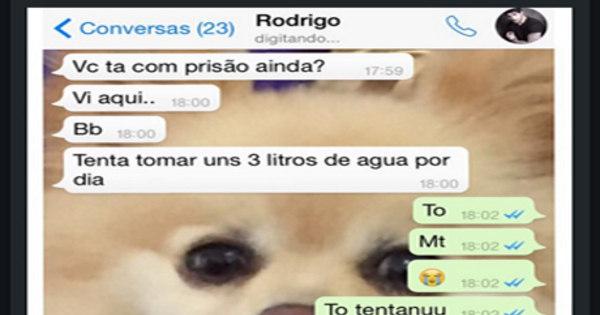 Adriana Sant'Anna divulga conversa constrangedora com Rodrigão ...