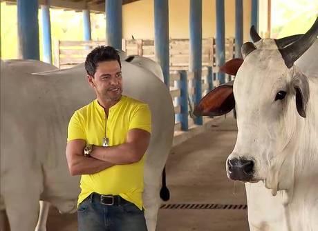 <em>Domingo Espetacular</em> mostra a fazenda de Zezé di Camargo