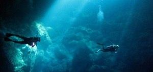Conheça algumas atrações para quem se interessa por mergulho