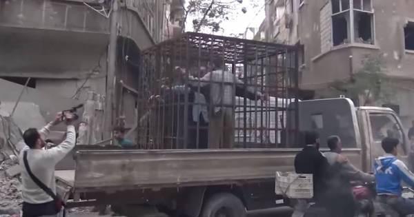 """Rebeldes sírios enjaularam civis e os usaram como """"escudos ..."""