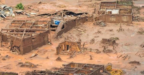 'Impacto de lama no mar seria como dizimar Pantanal', diz biólogo ...