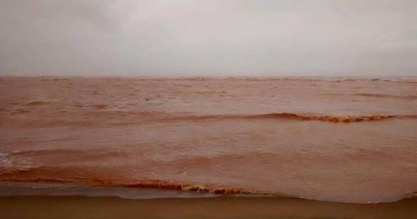 Praias de Linhares ( ES) são interditadas após chegada da lama de ...