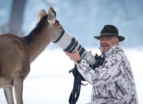 Imagens provam: ser um fotógrafo da natureza é a melhor carreira!